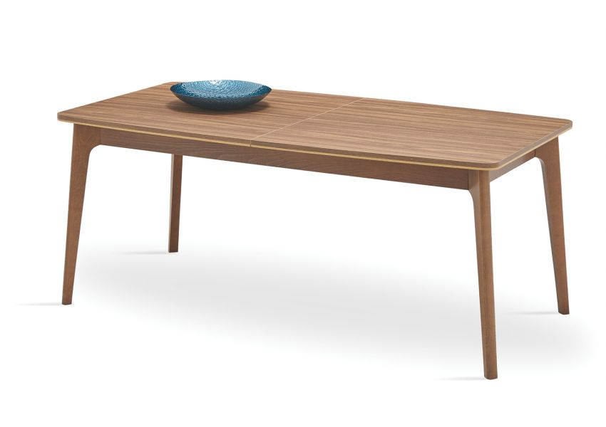 Raum Extendable Dining Table